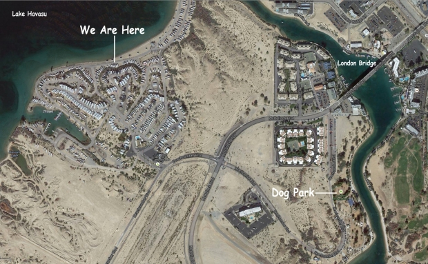 LakeHavasu_Dec12-10_07_Dog_Park_03