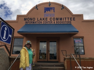 Mono Lake Bookstore