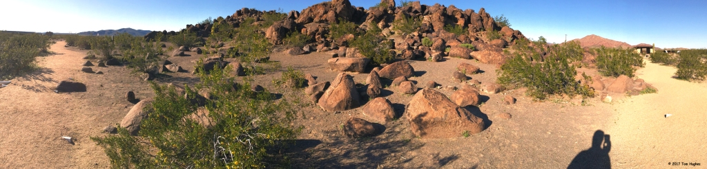 Painted Rock Petroglyphs