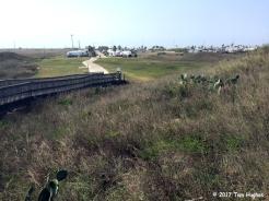 Boardwalk to the Gulf